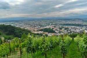 Pogled na Požegu s Požeške gore